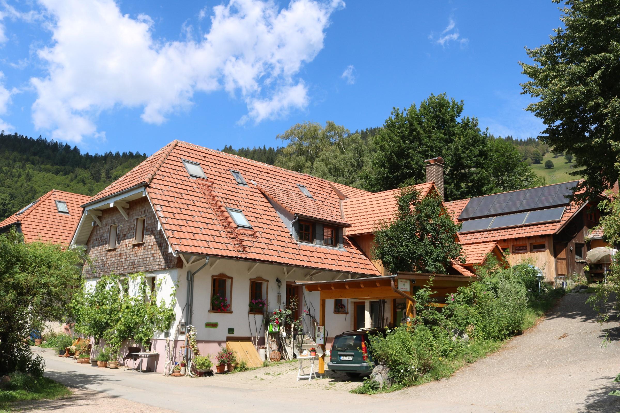 Gästehaus-Birkenhof-im-Juli