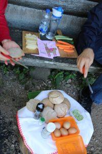 Picknick_auf_Lamatour_mit_Birkenhoflamas