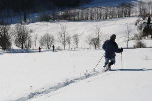 Schneeschuwandern-am-Belchen-beim-Gästehaus-Birkenhof
